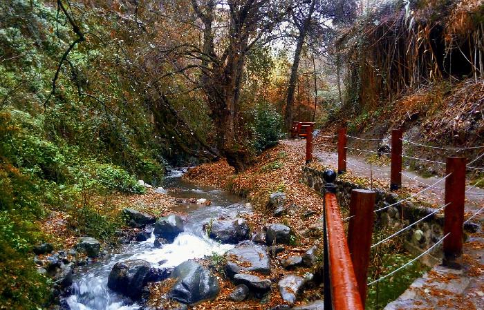 Klarios river Kakopetria